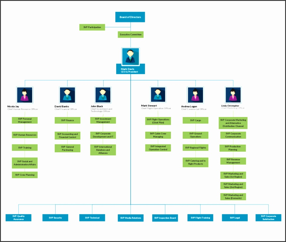Org Chart Template for Airline