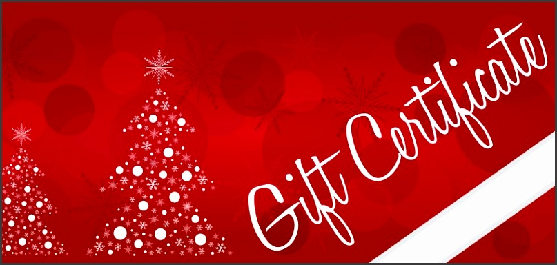 Holiday Auto Detailing Gift Certificates Available At M&M