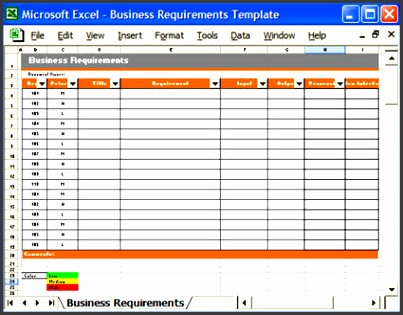 Business Requirements – Excel Template