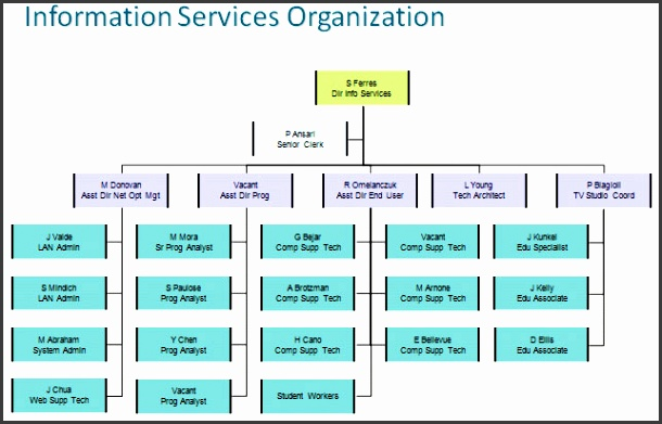 it department organization chart It Org Charts