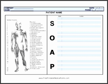 SOAP Note with Body Medical Form