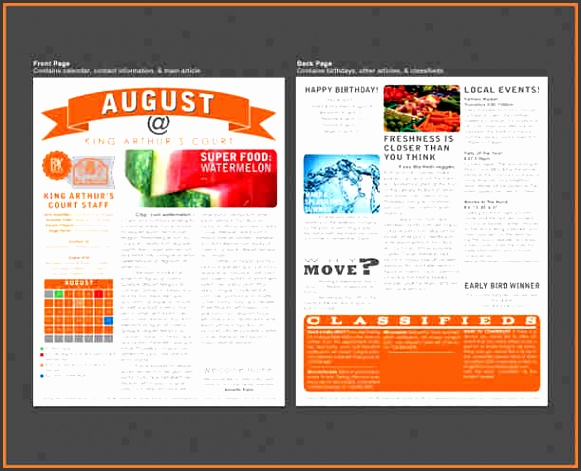 Printed Newsletter Templates apartment Newsletter Templates