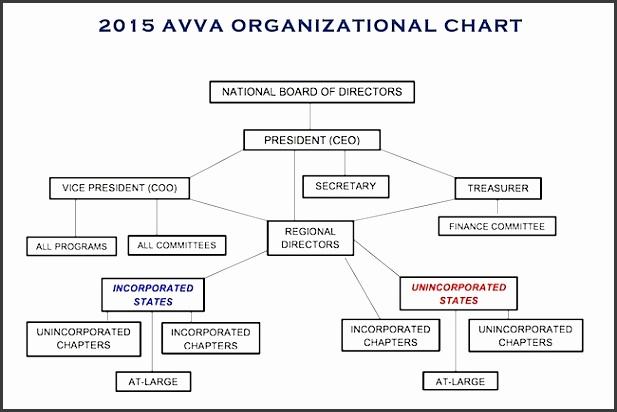 non profit organizational chart About AVVA