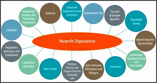 Image result for non profit organizational chart spca strategic plan Pinterest