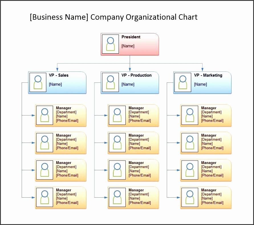 organizational chart 30