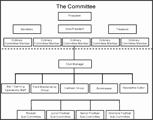 organisation structure of a non profit sport club