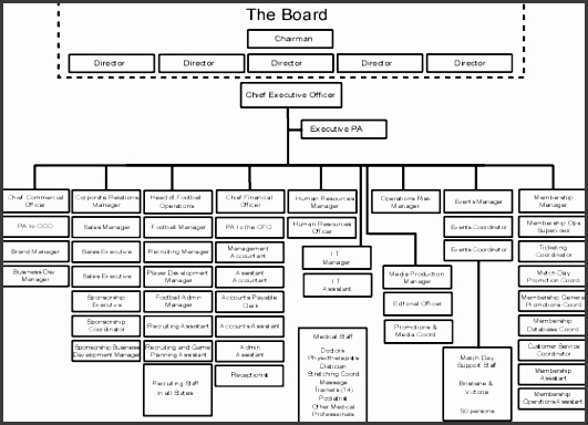 Example of a organisation structure for a major football club professional for profit