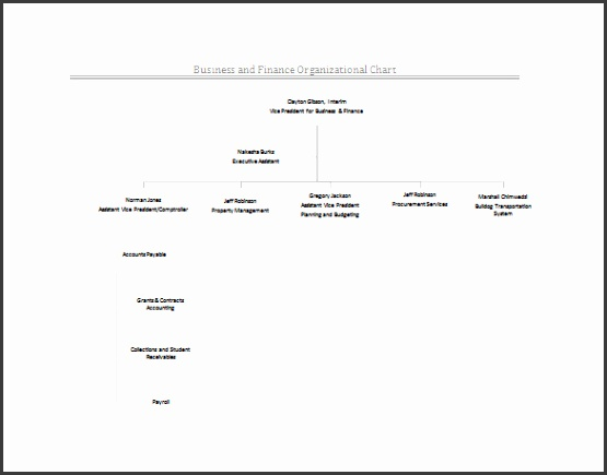 Business and Finance Organizational Example Chart Free Download