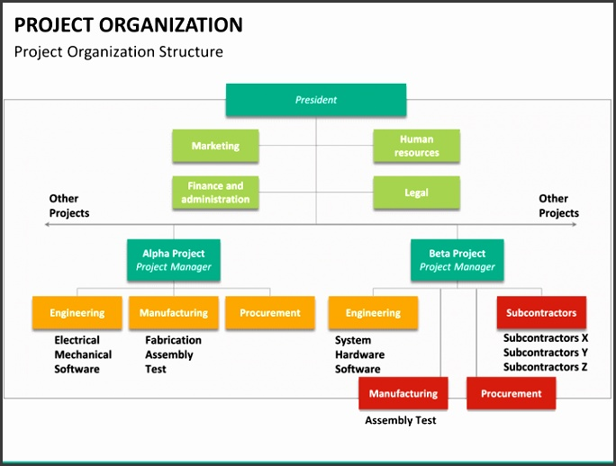 Project organization PPT slide 12