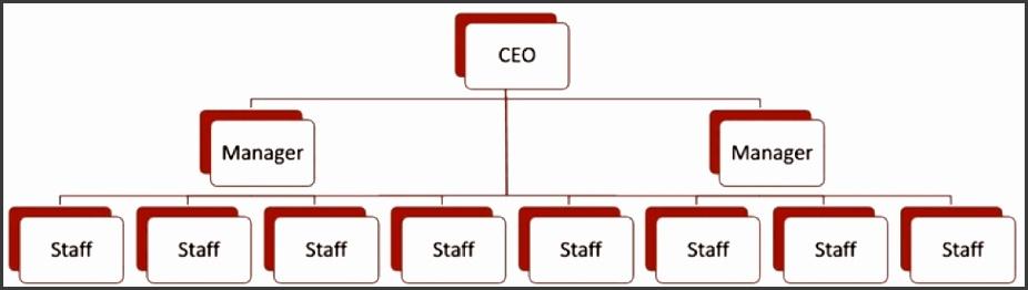 A flat organizational chart example
