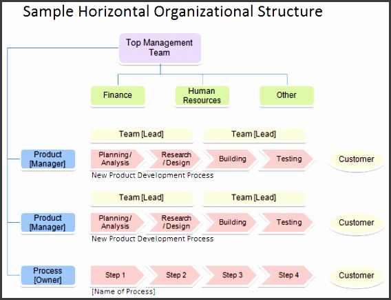Horizontal Organizational Structure