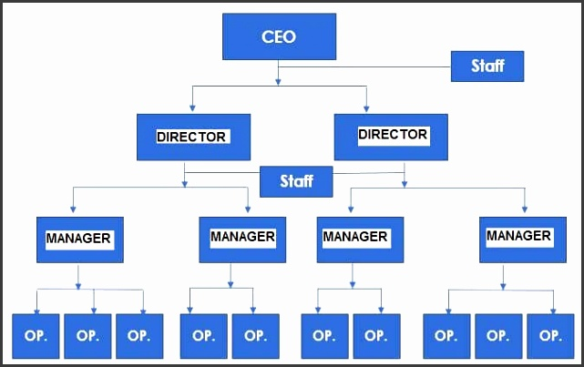Organizational structure examples Staff aligned