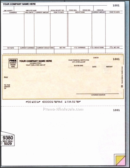 Payroll Check Template Microsoft Word