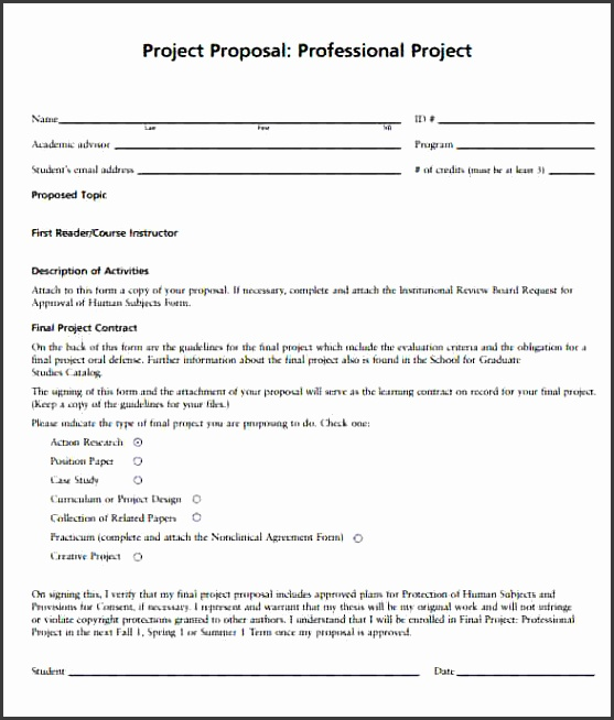 Professional Proposal Template 7 Download Documents In PDF Word professional