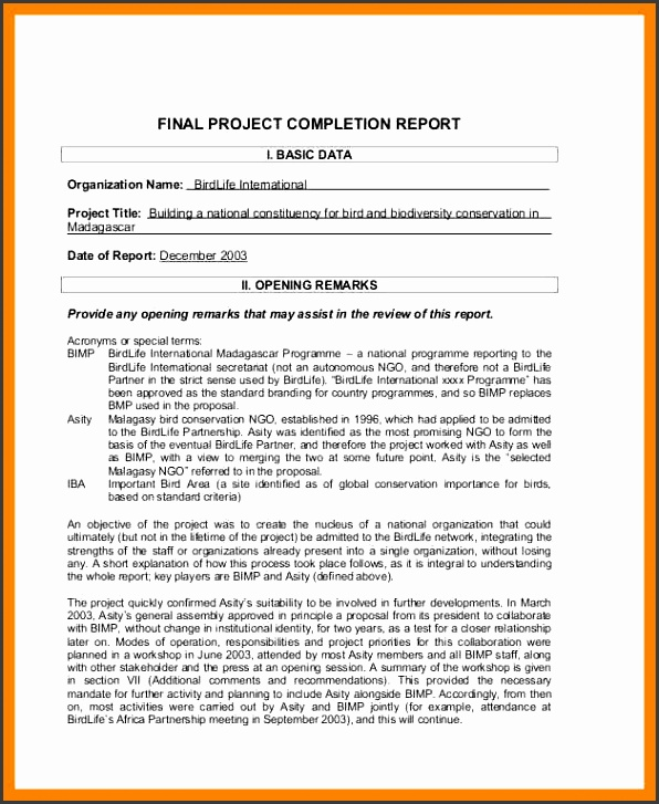 project pletion report Software Project pletion Report Sample
