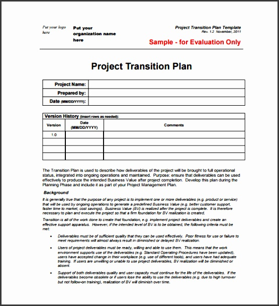View r Project Plan Template 23 Free Word