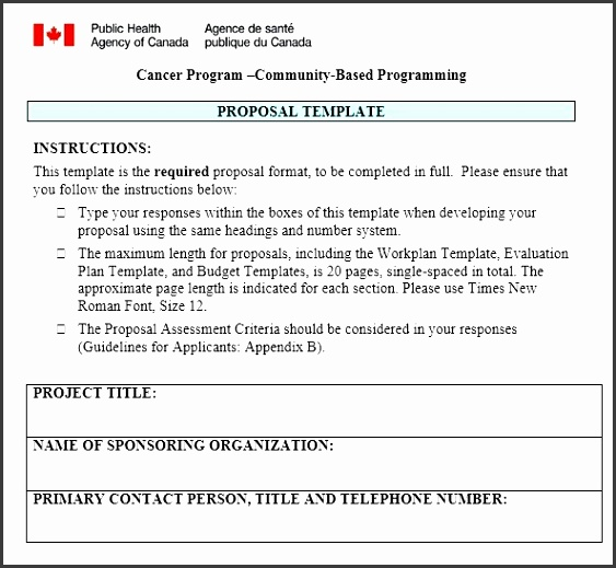Here is preview of another Government Project Proposal Template created using MS Word