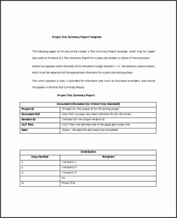 7 project summary templates free word pdf document