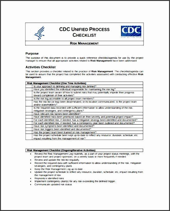 9 Project Risk assessment Template Example