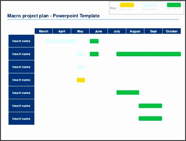 4 55 Macro project plan Powerpoint Template