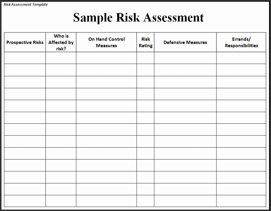 23 Sample risk assessment form strong Sample Risk Assessment Form Unconventional shots Template Word Excel Formats