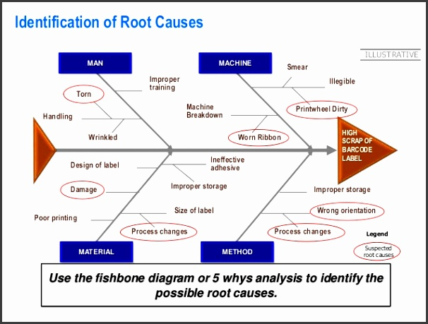 Root Cause 20