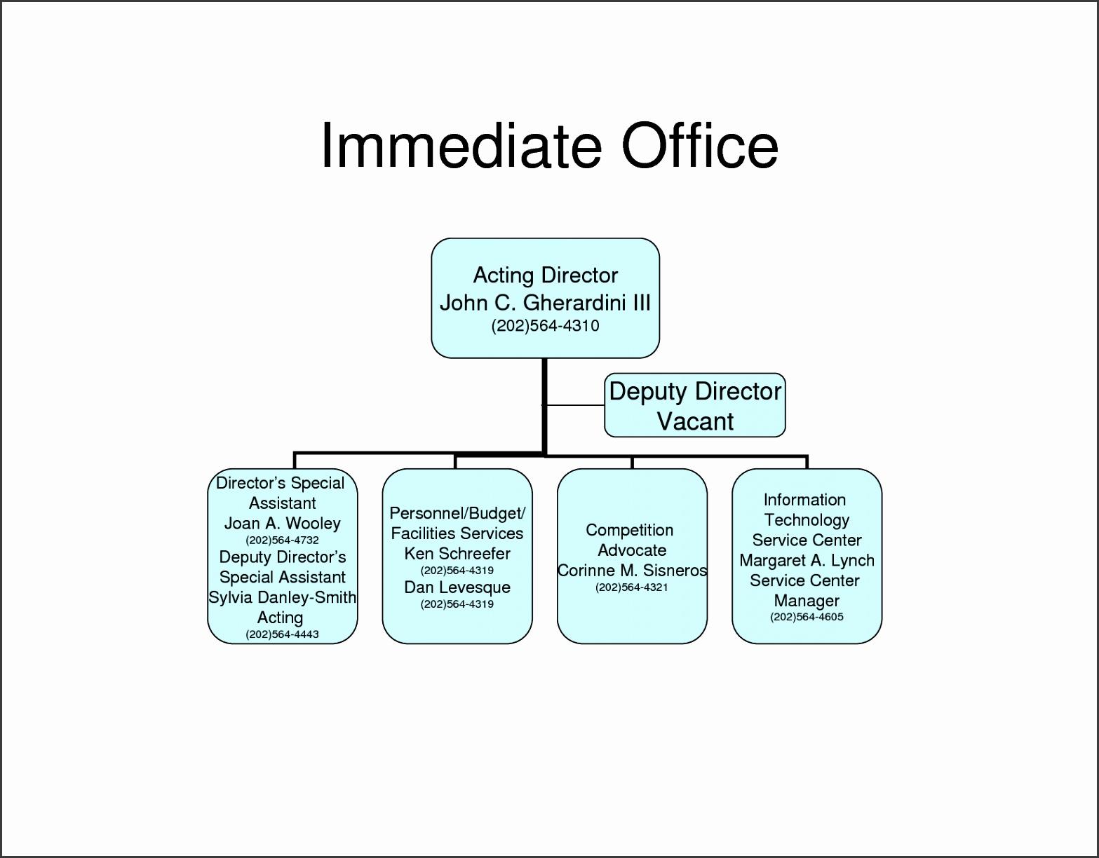 small business organizational chart sample
