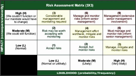 Risk assessment Matrix 3x3 Image description below