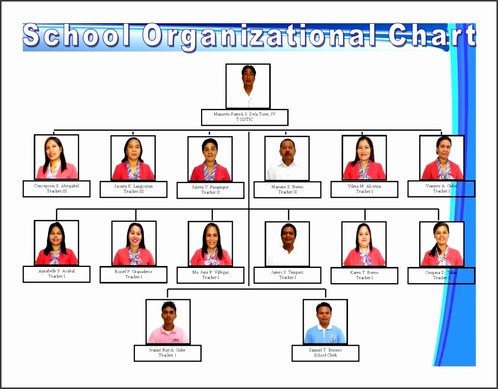 Examples of organizational charts for schools simple