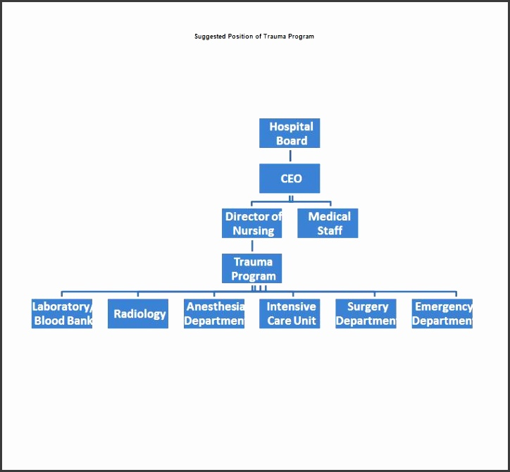 Printable Organizational Chart Template 05