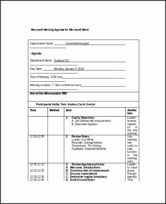 Sample Microsoft Meeting Agenda Template for Microsoft Word