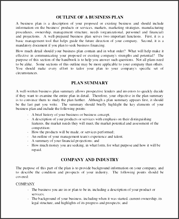 Sample Business Plan Outline Examples In Word