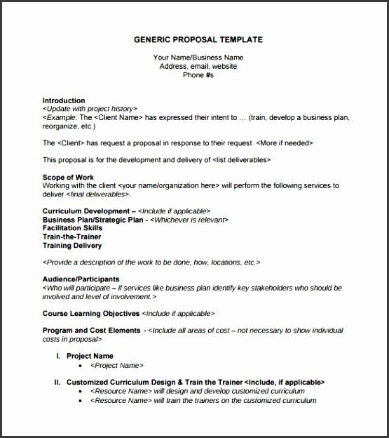 Sample Generic Business Proposal Template