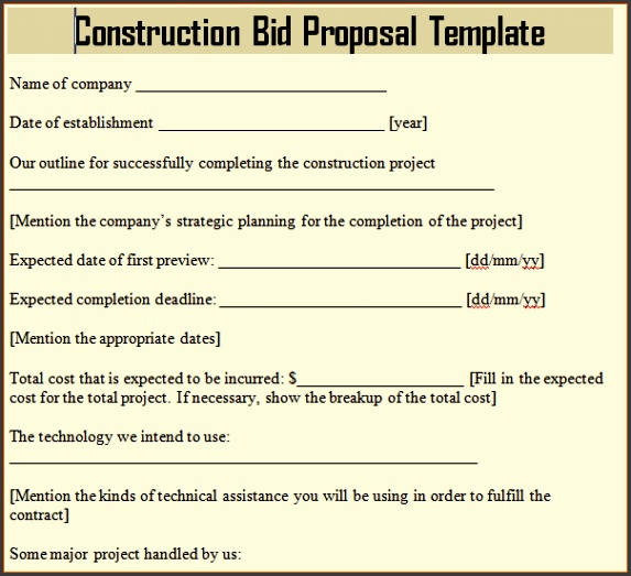 Proposal Template Word Professional Business Proposal Template Word bid proposal template