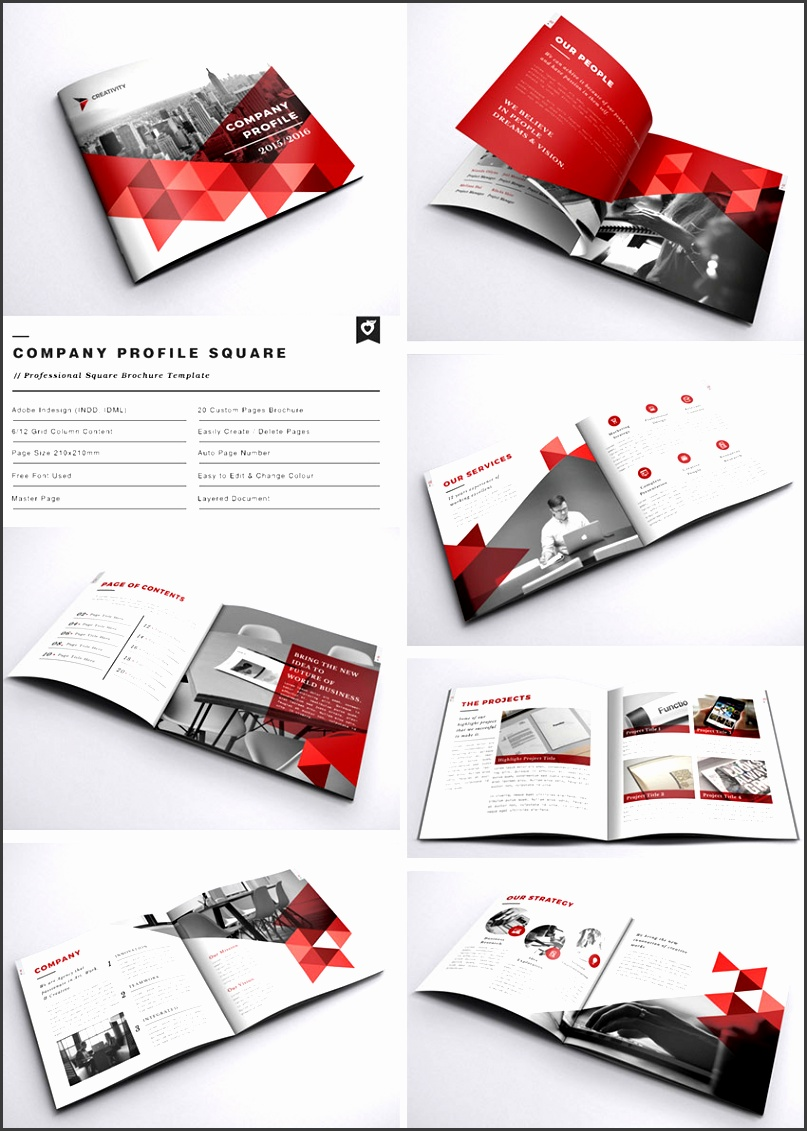 pany Profile Square INDD Brochure