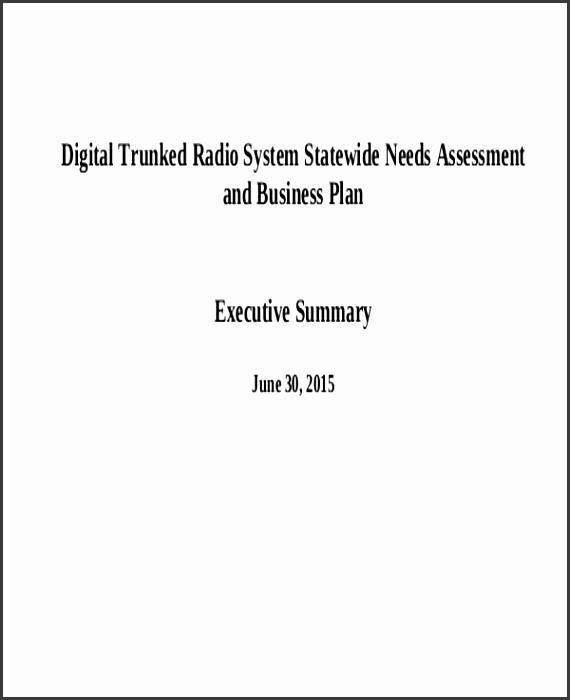 Business Plan Needs Assessment