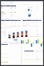 Excel Financial Model CE