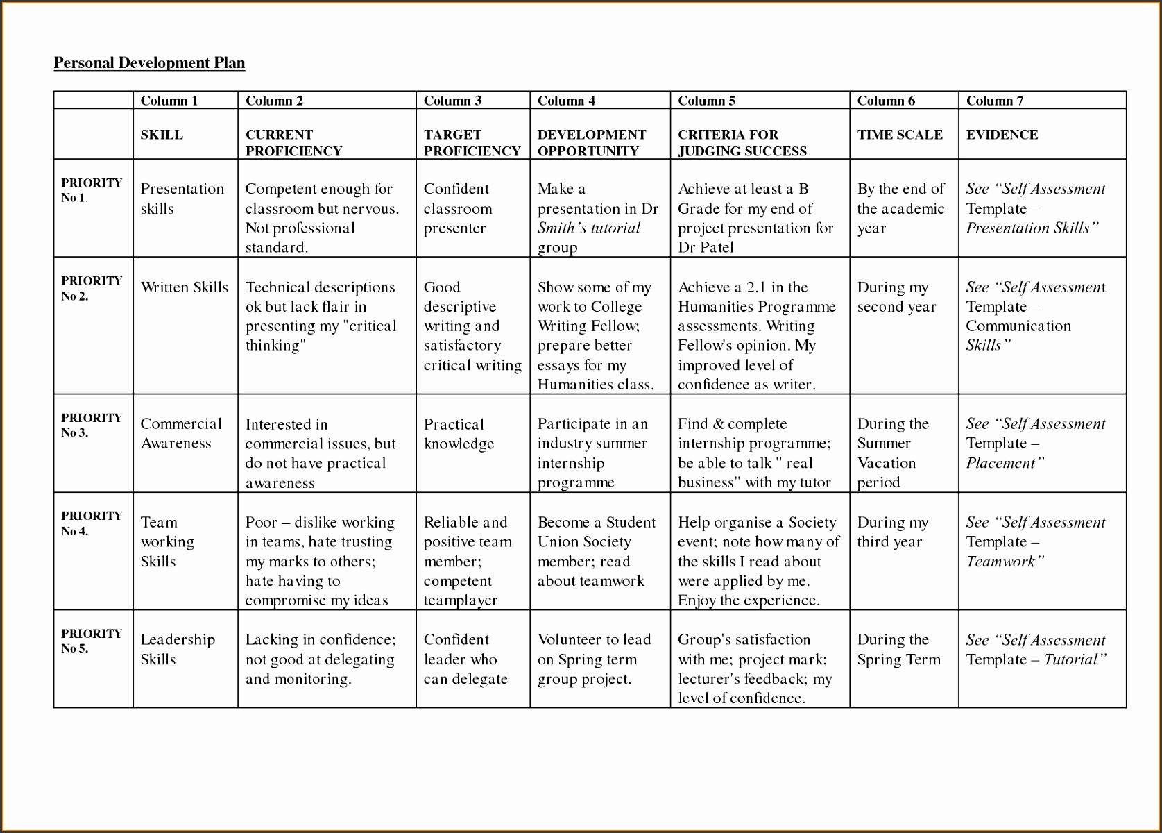 Development Plan Templatereer Development Template for Career Development Plan Template