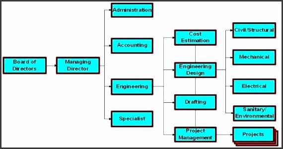 pany organizational