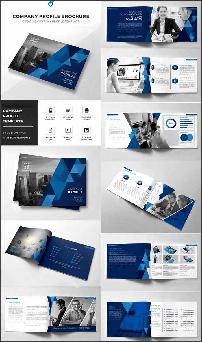 pany Profile Brochure INDD Template
