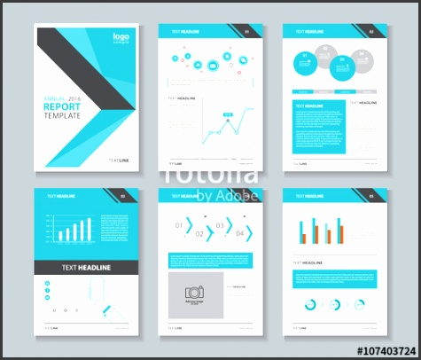 pany profile annual report brochure flyer layout template page layout