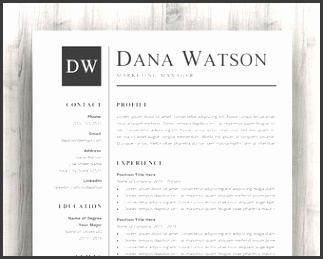 Professional Resume CV Template for Word