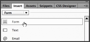 From the Insert panel switch the Form category and click Form