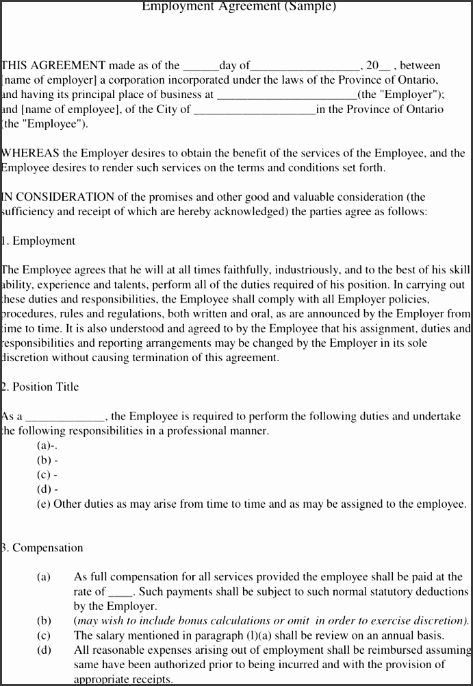 Employment Agreement Sample 1