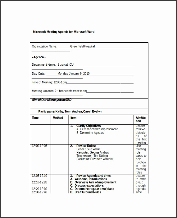 microsoft word agenda template sample microsoft meeting agenda template for microsoft word