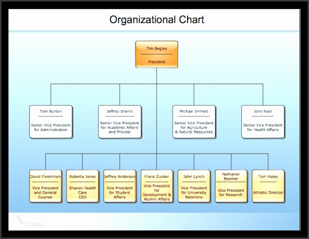 Sample organizational charts our organizational chart software lets you create clear org charts