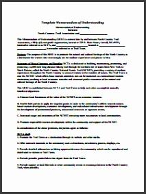 Memorandum of Understanding Template Free Download Create Edit Fill and Prin