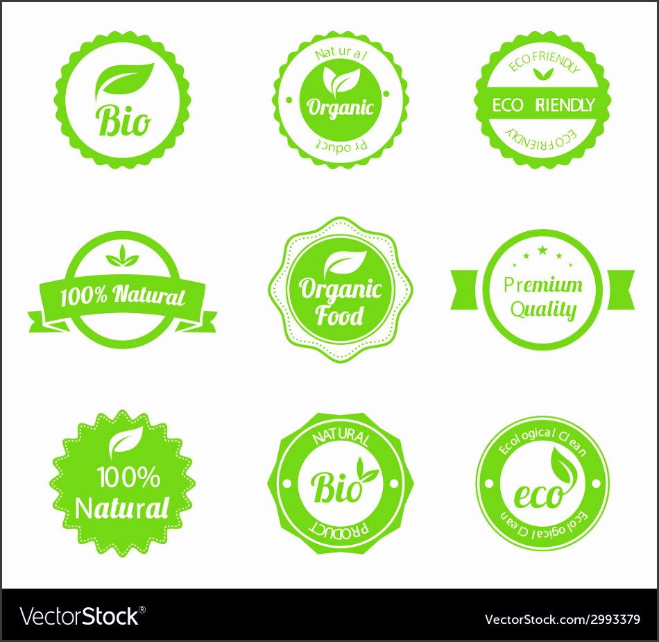 Eco Vintage Labels Bio template set vector image