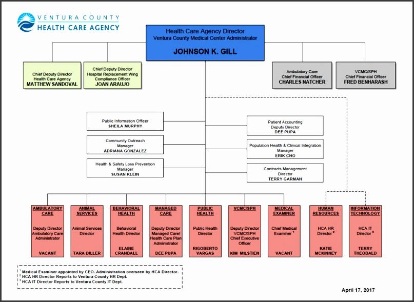 hca org chart