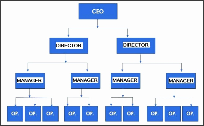 Small business organizational structure examples Inline functional and staff aligned structures